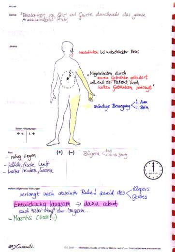 Bryonia alba3, Materia medica in Bildern