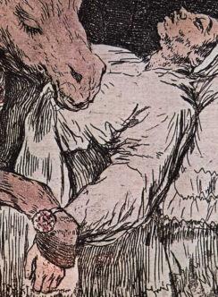 Goya, Arzt als Esel