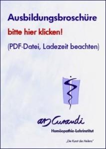 Ausbildung Heilpraktiker Broschüre